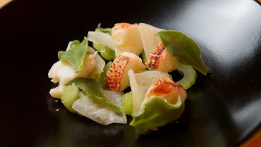 Butter poached crayfish with celery and kohlrabi served at Tulip Bar and Restaurant in Geelong.