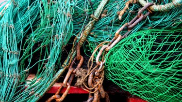 European labelling standards require the origin, species and method used to catch seafood.