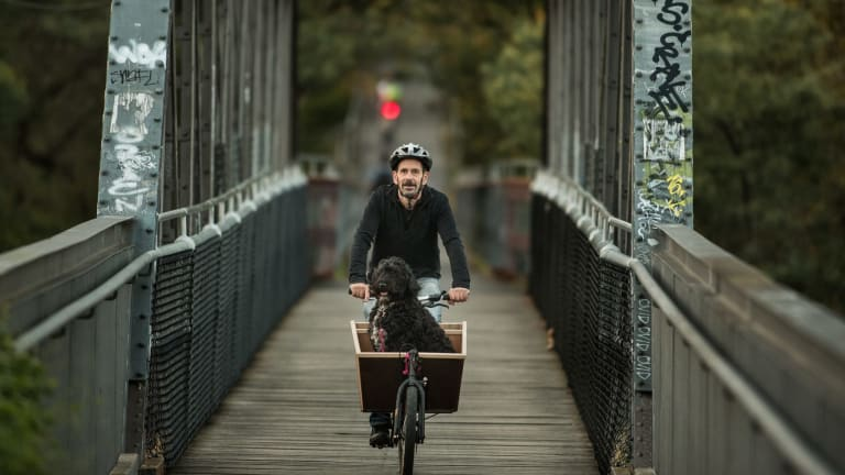 A cyclist and his canine companion on the Walmer Street bridge in Abbotsford.