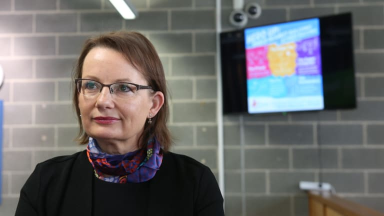 Health experts are critical at the exclusion of Health Minister Sussan Ley from the development of new air pollutiomn standards.