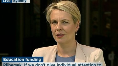 Acting Opposition Leader Tanya Plibersek didn't know Senator Conroy had even quit when asked about it at a press conference in Sydney.