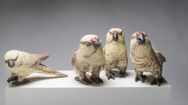 Ground Parrots, by Bev Hogg, from the Avairy exhibition.