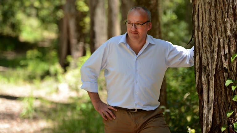 Plan: Labor Opposition Leader Luke Foley announced Pine Creek National Park will be a new koala national park if Labor is elected.