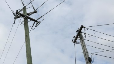The Baird government has said poles and wires will go on the market if it is re-elected next year.