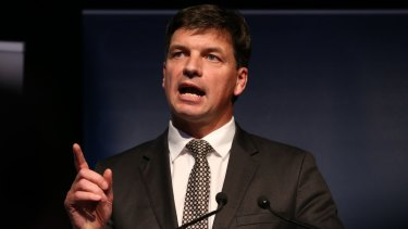Playing catch-up: Assistant Minister for Digital Transformation Angus Taylor.