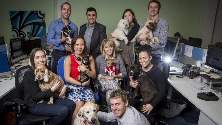 Ray Milidoni, general manager (rear second left) and Nick Bell, managing director (rear left) and their staff with their dogs at WME Group.