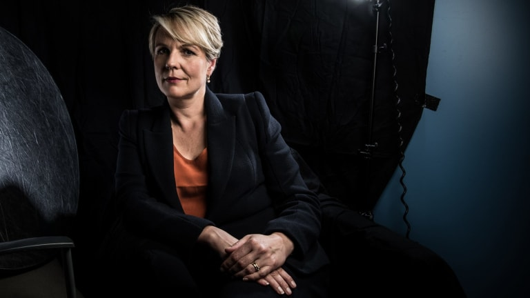 Frustration is mounting about the slowing of internet speeds, says deputy opposition leader Tanya Plibersek.