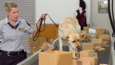 Labor has promised to set up a new biosecurity research centre.