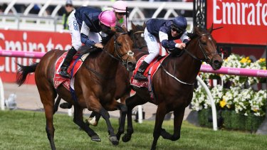 In the immediate lead-up to the Melbourne Cup, Sportsbet processed 17,000 transactions per second.