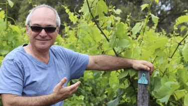 Cloudburst's Will Berliner is taking a strict bio-dynamic approach to his wines in Margaret River.