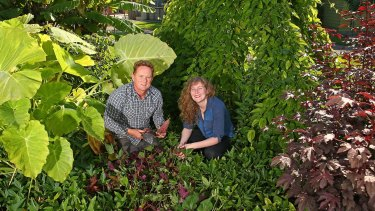 Chris Williams and Sophie Lamond at one of the sweet potato beds.