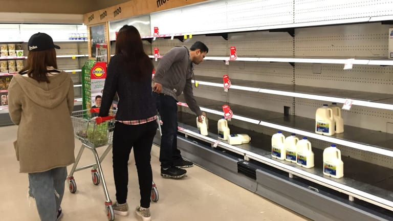 Empty milk shelves at Coles Chadstone.