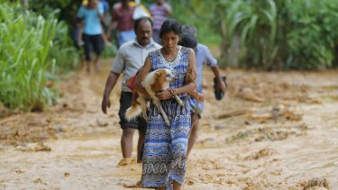 A Sri Lankan landslide survivor carries her dog over the mud in Elangipitiya village on Wednesday.