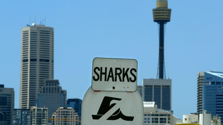 'It looks like an invitation for shonks and sharks to come out and put consumers at risk.'