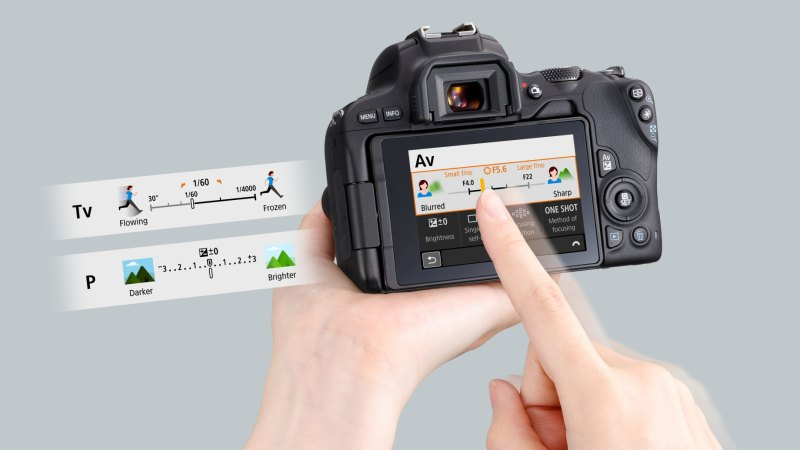 Canon EOS 200D review: small and mighty DSLR is great for