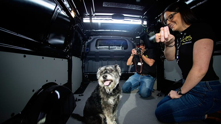 Pet Paparazzi's Nik Leigh and Lauren Wills, with Pax the dog, demonstrate how their business idea would work in the back of a van.