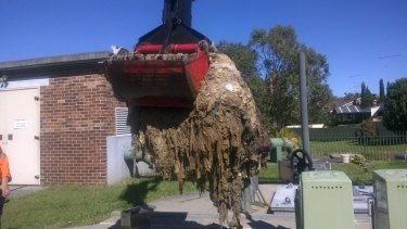 Sydney Water workers clean out a blockage of wet wipes also known as a fatberg.