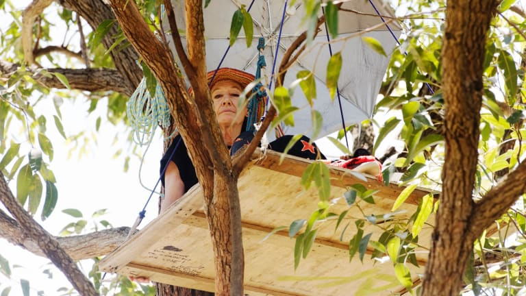 Steffi Leedham protesting in one of the trees.