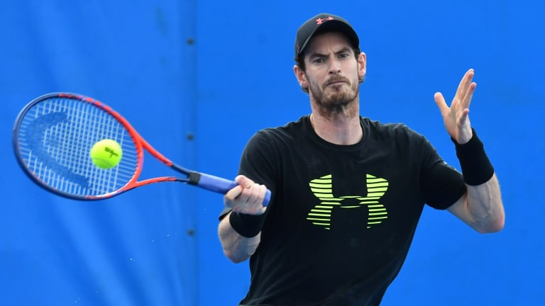 Into the Groove: Andy Murray eases his way back into competitive tennis at training in Brisbane.