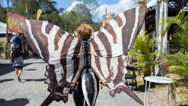Larger-than-life butterflies have fluttered to Woodford.