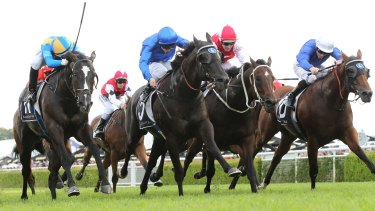 Drama-charged race: Brenton Avdulla rides Music Magnate to victory in the Hall Mark Stakes.