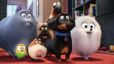 <i>The Secret Life of Pets</i>.