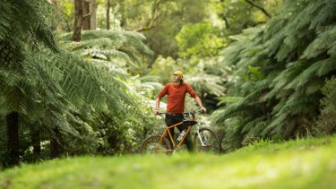 Mountain bike devotee Damian Auton in Warburton, where the council wants to build almost 100 kilometers of new mountain bike trails.