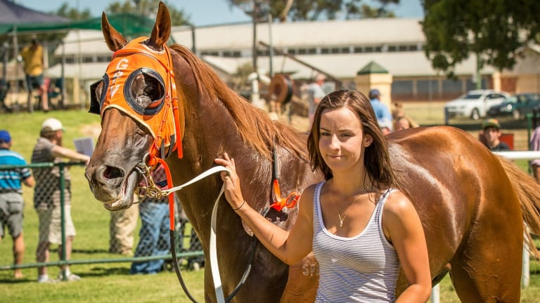 Canberra track work rider Thomson at a race meeting at Cowra in 2015. Photo: Janian McMillan
