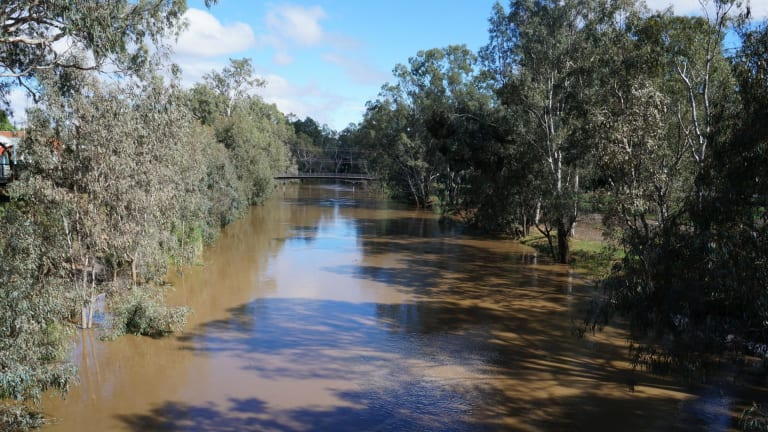 Wangaratta copped a month of rain in a day on Saturday.