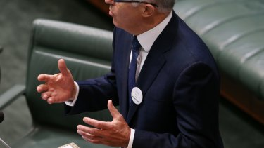 Prime Minister Malcolm Turnbull wore a badge from the 1967 referendum during his address at Parliament House.