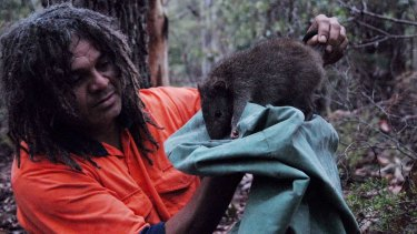 Rare encounter: Ranger Marcus Ferguson holds a long-nosed potoroo.