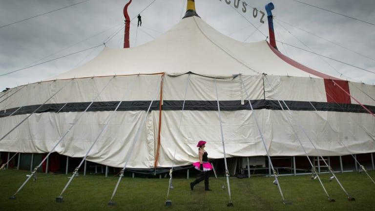 Performer Mel Fyfe walks around the Circus Oz tent.