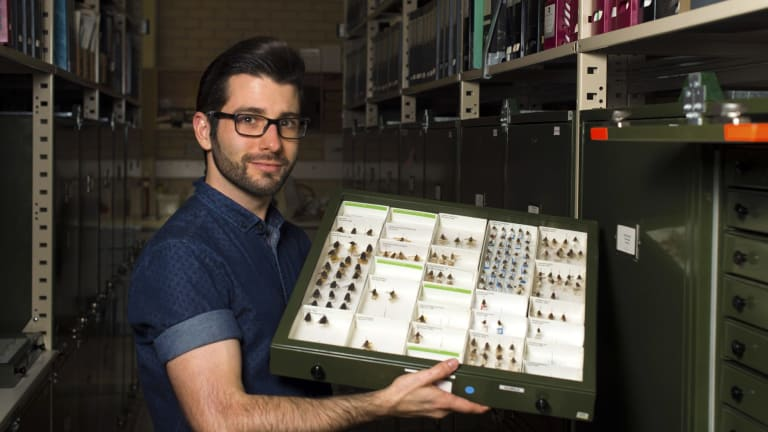 Entomologist Bryan Lessard of the Australian National Insect Collection at CSIRO Canberra has been announced as a speaker at TEDxCanberra 2016.