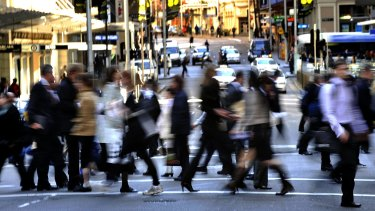 Sydney's professional ranks have grown by a third in the past decade, the 2016 census shows.