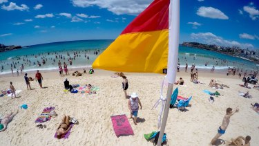 Royal Life Saving Australia is asking people to be careful to swim first before drinking.