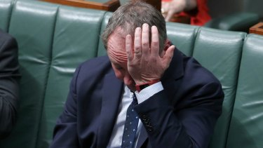 Deputy Prime Minister Barnaby Joyce has been revealed to be a New Zealand citizen.