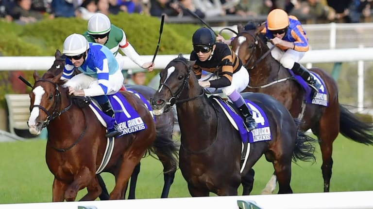 Title clincher: Hugh Bowman and Cheval Grand hold off the inside run of Kitasan Black to win the Japan Cup.