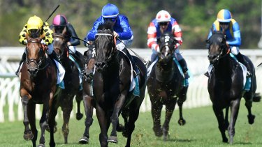 Chip off the block: Glyn Schofield pilots Kementari to victory in the Eskimo Prince Stakes at Warwick Farm.