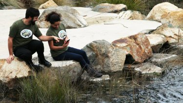 Canberrans are being urged to take part in this year's #carplove20 campaign.