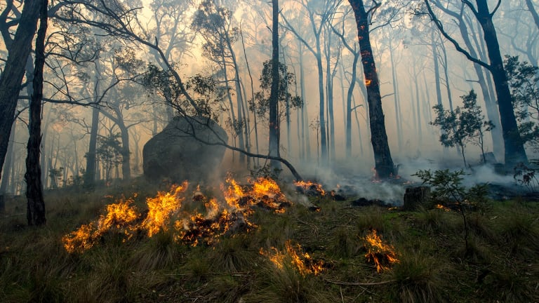 The Lancefield fire in Cobaw Forest - locals caught up in it could not phone out because of coverage black spots.