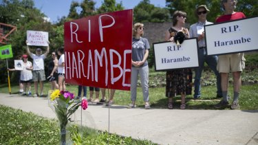Animal rights activists and mourners gather for a Memorial Day vigil outside the Cincinnati Zoo.
