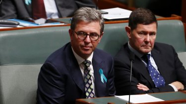 Labor is challenging Assistant Health Minister David Gillespie's eligibility to sit in Parliament.