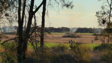 Land clearing on the Turnbulls' property.