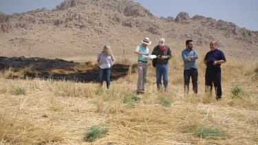 Hartnell and colleagues conduct a preliminary survey of Peshdar-36.