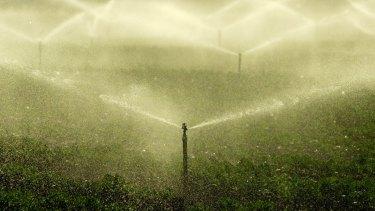 Crops being watered in South Werribee.