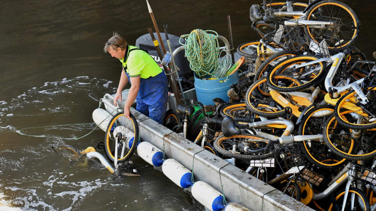 Contractors paid by oBike to collect their bicycles from Melbourne's Yarra last month.
