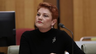 Senator Pauline Hanson has no special sympathy for Channel Ten.