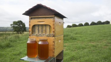 The Flow Hive raised more than $13 million in crowdfunding.