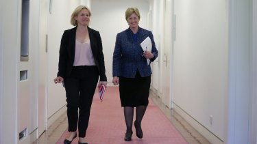 Greens leader  senator Christine Milne arrives at the Greens party room at Parliament House on Wednesday.