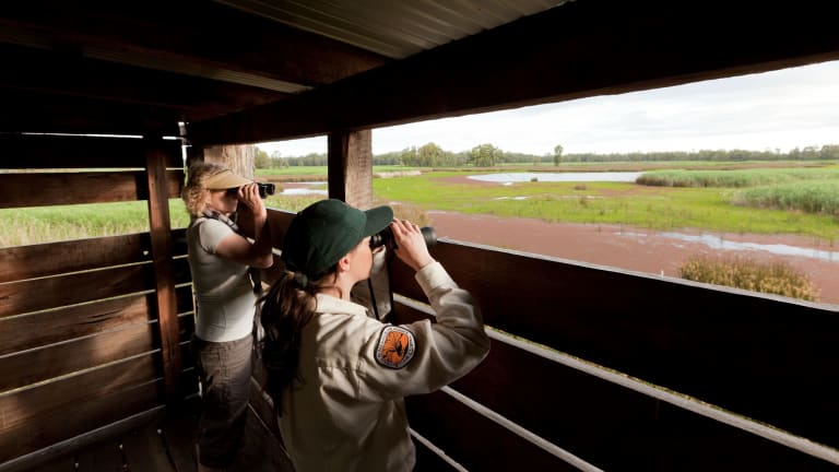 Open season for national park: Bird watching at the Murray Valley National Park.